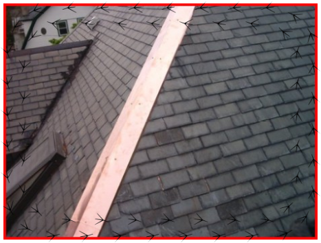 local metal roof installers,metal roofing installers,steel roofing,steel roofing contractors