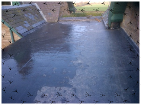 Rubber Roofers,rubber roof installers,epdm roofing,warm roofs