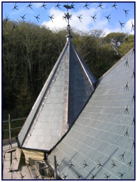 slate roofers,slating contractors,slaters,slate roofs,slated roofs
